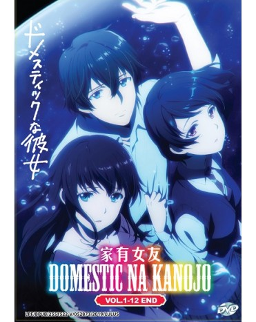 DOMESTIC NA KANOJO VOL. 1-12 END